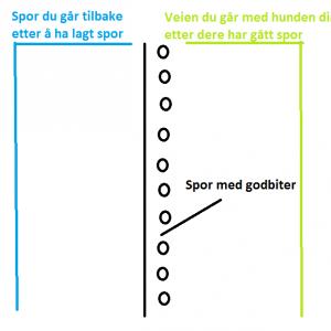 Illustrasjon